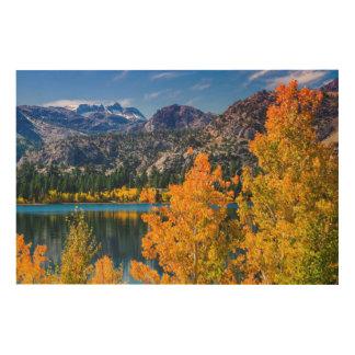 Impression Sur Bois Lac autumn autour de juin, la Californie