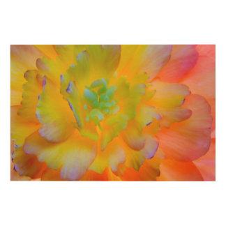 Impression Sur Bois Le bégonia rougeoyant fleurissent | Seabeck, WA