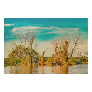Impression Sur Bois Le fleuve Parana, San Nicolas, Argentine