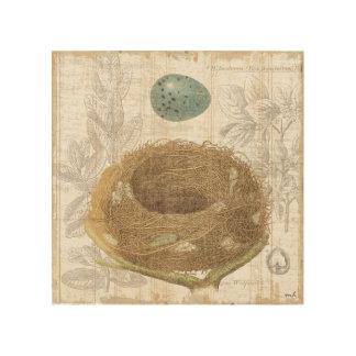 Impression Sur Bois Le nid d'un oiseau avec un oeuf décoratif