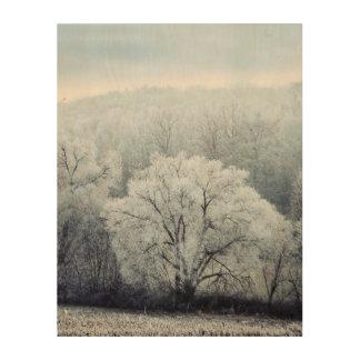 Impression Sur Bois Le paysage brumeux d'hiver avec la neige a couvert