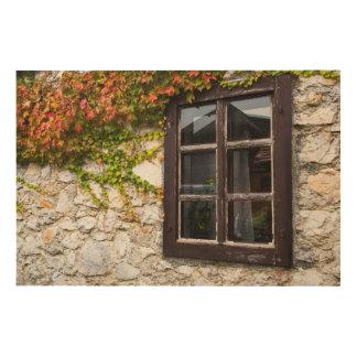 Impression Sur Bois Lierre et fenêtre, Croatie
