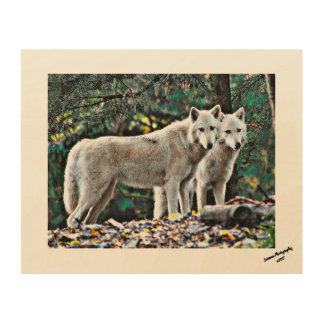 Impression Sur Bois Loups blancs sur une plaque en bois