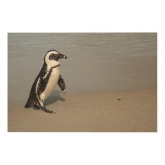 Impression Sur Bois Marche africaine de pingouin