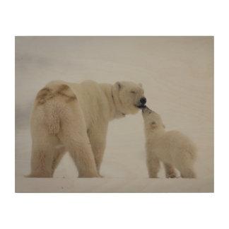 Impression Sur Bois Mère d'ours blanc avec CUB
