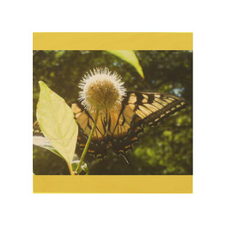 Impression Sur Bois Monarque de jaune d'art de mur en bois de bouleau