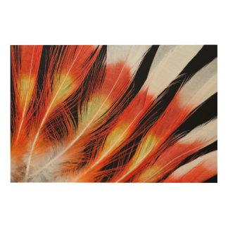 Impression Sur Bois Motif de plume de cacatoès