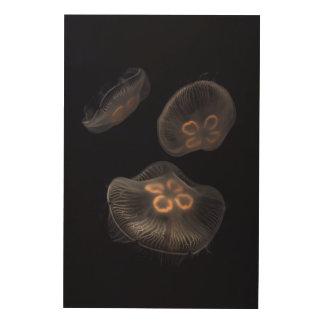 Impression Sur Bois Natation de méduses de lune