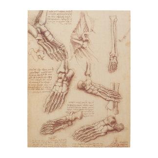 Impression Sur Bois Os de pied squelettiques d'anatomie humaine par da