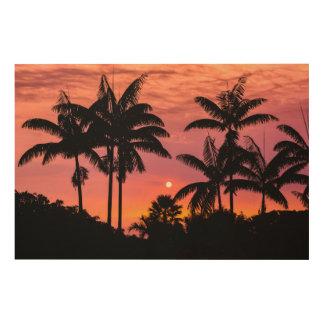 Impression Sur Bois Palmiers silhouettés, Hawaï