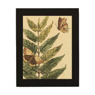 Impression Sur Bois Papillons et feuille avec le cadre noir