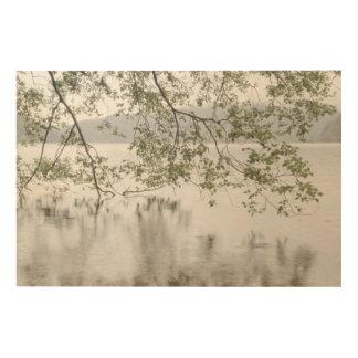Impression Sur Bois Parc national olympique du croissant | de lac, WA