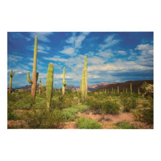 Impression Sur Bois Paysage de cactus de désert, Arizona