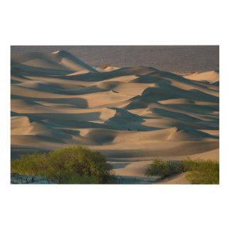 Impression Sur Bois Paysage de dune de sable, la Californie