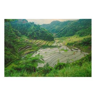 Impression Sur Bois Paysage de terrasse de riz, Philippines