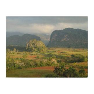 Impression Sur Bois Paysage panoramique de vallée, Cuba