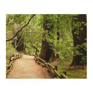 Impression Sur Bois Photographie de nature du chemin II en bois de