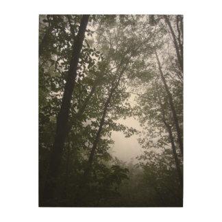Impression Sur Bois Photographie Pacifique brumeuse de verger de