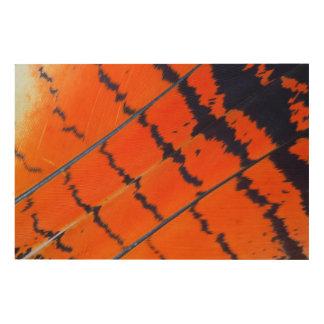 Impression Sur Bois Plumes oranges et noires de cacatoès