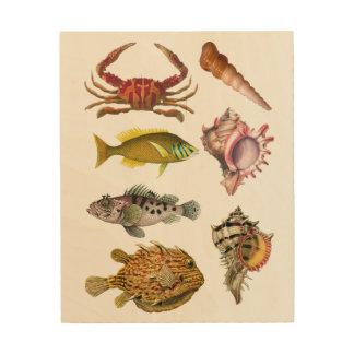 Impression Sur Bois Poissons, coquilles, vie marine, nautique