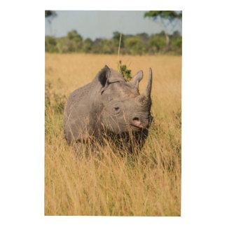 Impression Sur Bois Portrait de rhinocéros noir