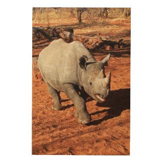 Impression Sur Bois Portrait noir de rhinocéros