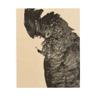 Impression Sur Bois Portrait noir et blanc de cacatoès