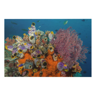 Impression Sur Bois Récif coralien et poissons