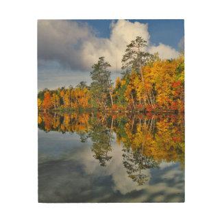 Impression Sur Bois Réflexions d'étang d'automne, Maine