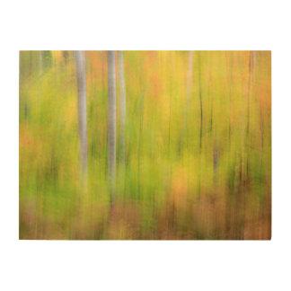 Impression Sur Bois Région boisée | Michigan, péninsule supérieure