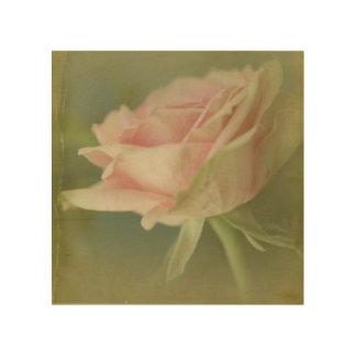 Impression Sur Bois Rêve dans le rose VI