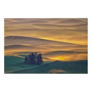 Impression Sur Bois Rolling Hills de blé au lever de soleil | WA
