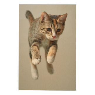 Impression Sur Bois Sauter de chat de calicot