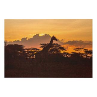Impression Sur Bois Silhouette de girafe de masai