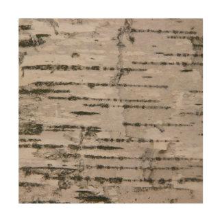 Impression Sur Bois Texture d'arbre de bouleau