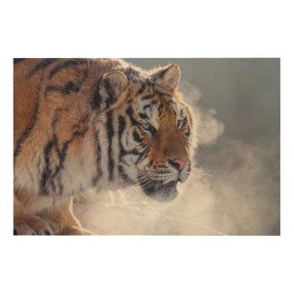 Impression Sur Bois Tigre un matin froid
