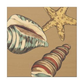 Impression Sur Bois Trio de Shell sur kaki