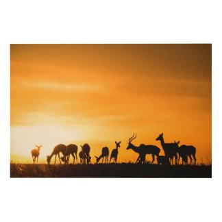 Impression Sur Bois Troupeau d'impala au coucher du soleil
