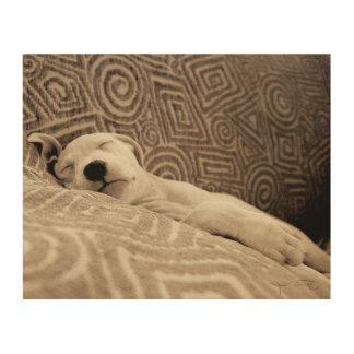 Impression Sur Bois Un chien fatigué