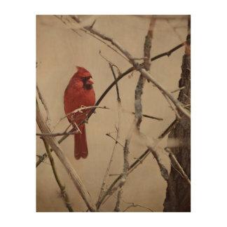 Impression Sur Bois Un oiseau cardinal rouge sur une branche dans les