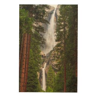 Impression Sur Bois Yosemite Falls, la Californie