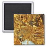Impressionisme d'abrégé sur chasse de Robin d'Amér