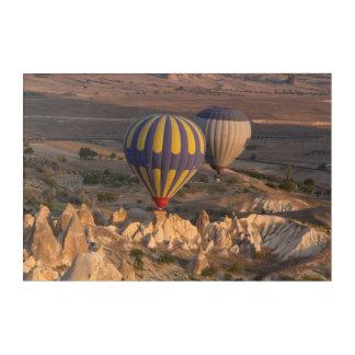 Impressions En Acrylique Air chaud montant en ballon en Turquie