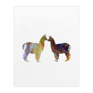 Impressions En Acrylique Alpaga