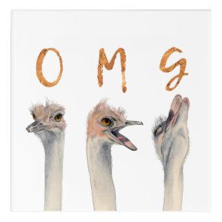 Impressions En Acrylique Autruches d'OMG