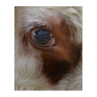 Impressions En Acrylique Beauté dans l'oeil de la vache à spectateur