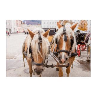 Impressions En Acrylique Chariot | Autriche de cheval