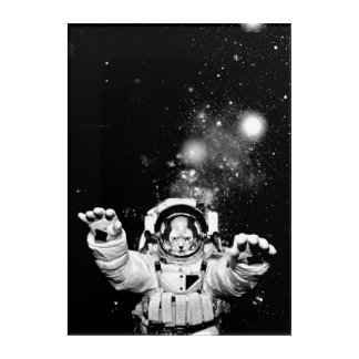Impressions En Acrylique Chat de cosmonaute