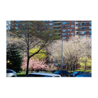 Impressions En Acrylique cinquante-neuvième Sud de Central Park de rue
