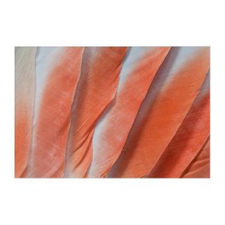 Impressions En Acrylique Conception de plume de cacatoès rose